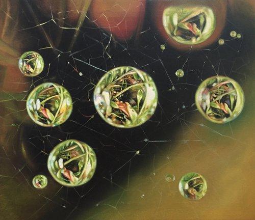 Photo of Dew on Spiderweb